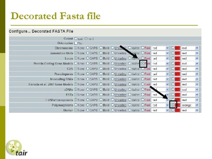 Decorated Fasta file