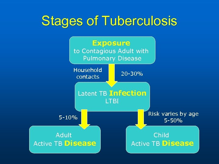 Stages of Tuberculosis Exposure to Contagious Adult with Pulmonary Disease Household contacts 20 -30%
