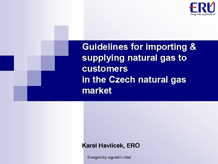 Guidelines for importing & supplying natural gas to customers in the Czech natural gas