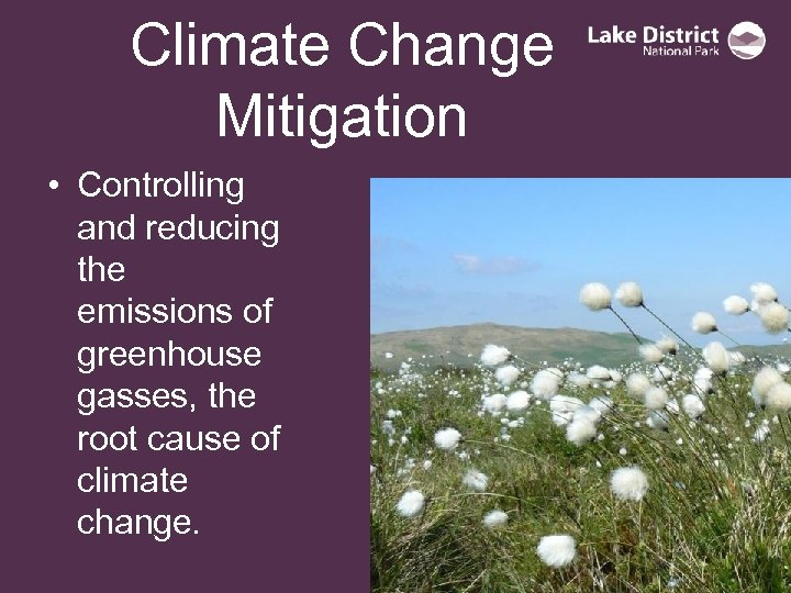 Climate Change Mitigation • Controlling and reducing the emissions of greenhouse gasses, the root