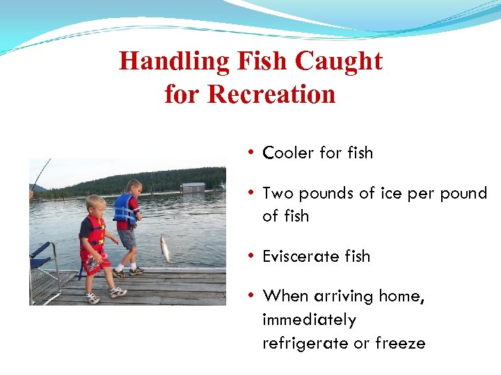 Handling Fish Caught for Recreation • Cooler for fish • Two pounds of ice
