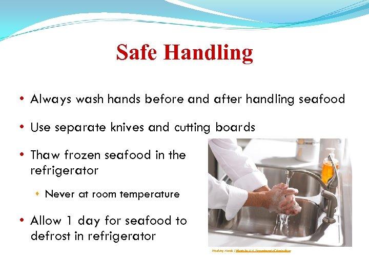 Safe Handling • Always wash hands before and after handling seafood • Use separate