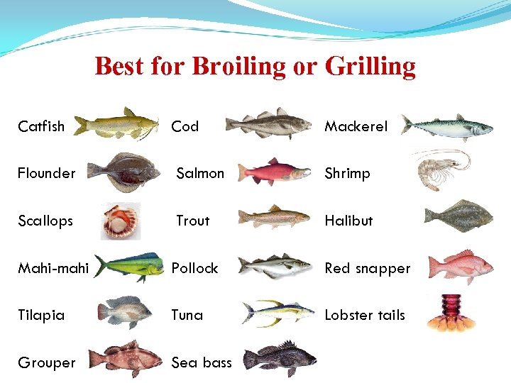 Best for Broiling or Grilling Catfish Cod Mackerel Flounder Salmon Shrimp Scallops Trout Halibut