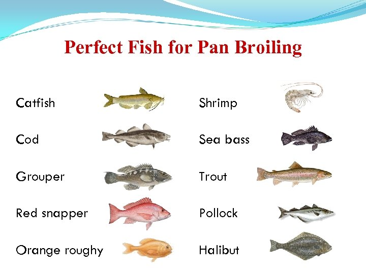 Perfect Fish for Pan Broiling Catfish Shrimp Cod Sea bass Grouper Trout Red snapper