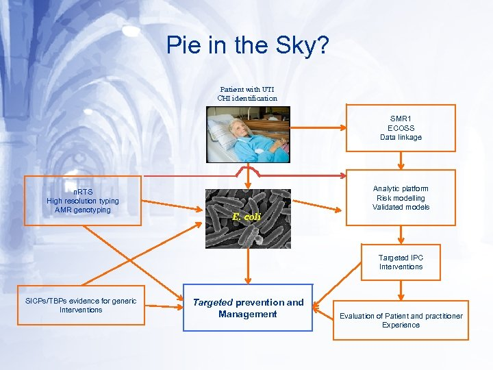 Pie in the Sky? Patient with UTI CHI identification SMR 1 ECOSS Data linkage
