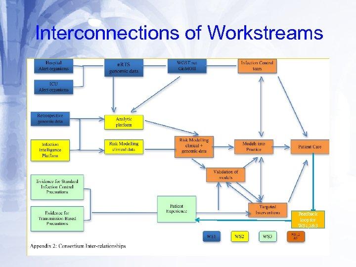 Interconnections of Workstreams Feedback loop for WS 1, 2&3