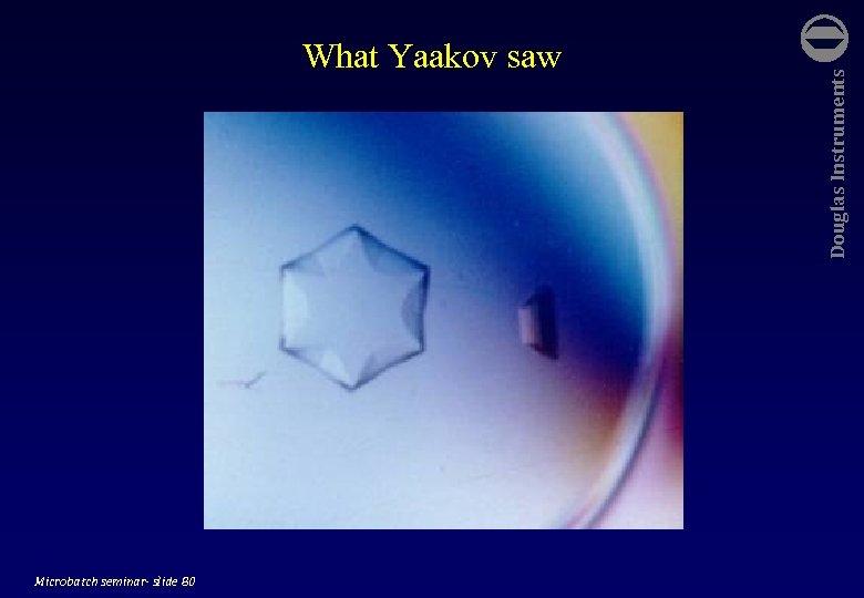 Microbatch seminar- slide 80 Douglas Instruments What Yaakov saw