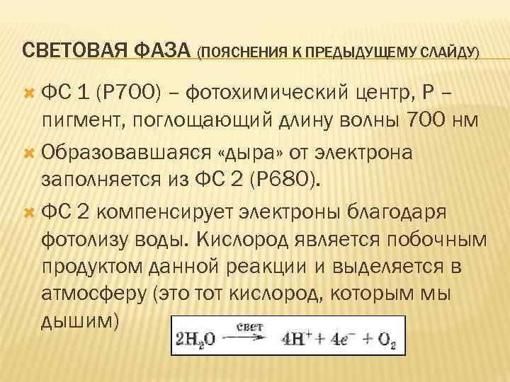 СВЕТОВАЯ ФАЗА (ПОЯСНЕНИЯ К ПРЕДЫДУЩЕМУ СЛАЙДУ) ФС 1 (Р 700) – фотохимический центр, Р