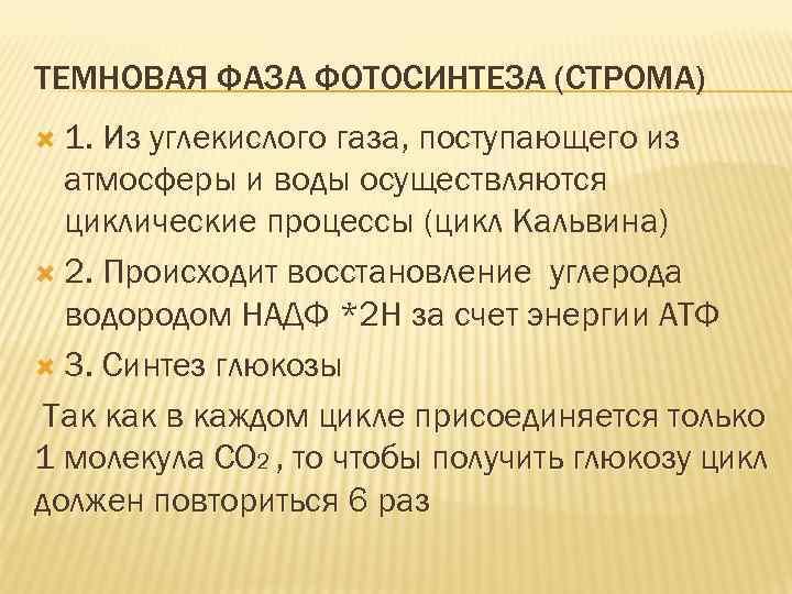 ТЕМНОВАЯ ФАЗА ФОТОСИНТЕЗА (СТРОМА) 1. Из углекислого газа, поступающего из атмосферы и воды осуществляются