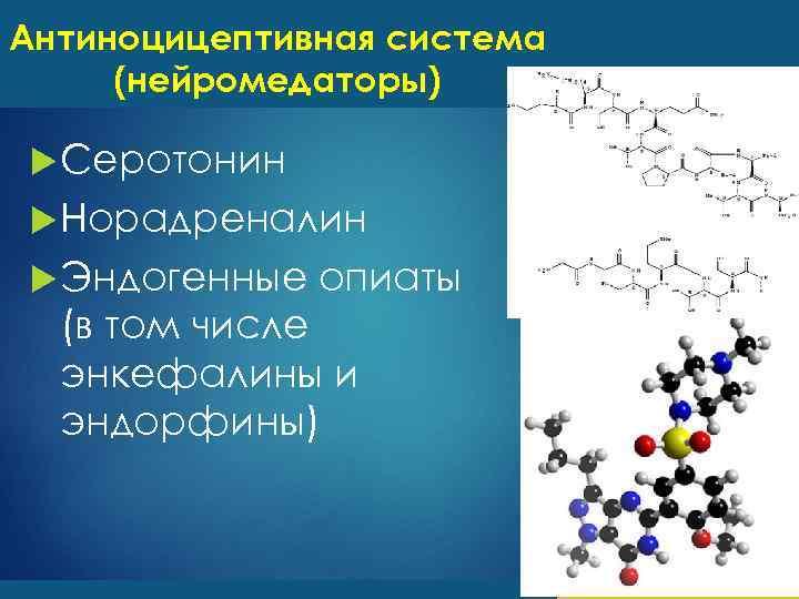Антиноцицептивная система (нейромедаторы) Серотонин Норадреналин Эндогенные опиаты (в том числе энкефалины и эндорфины)