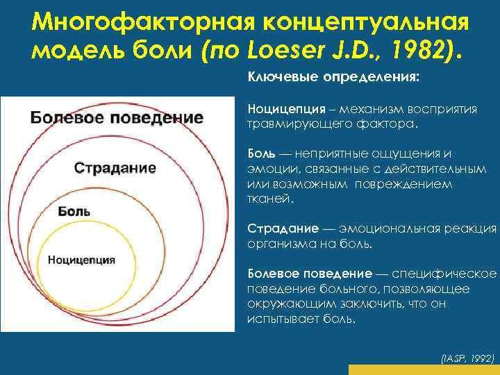 Многофакторная концептуальная модель боли (по Loeser J. D. , 1982). Ключевые определения: Ноцицепция –