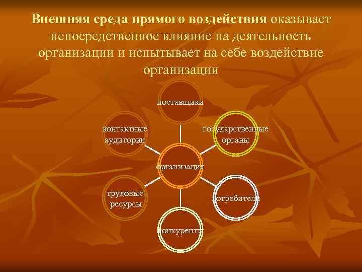 Внешняя среда прямого воздействия оказывает непосредственное влияние на деятельность организации и испытывает на себе