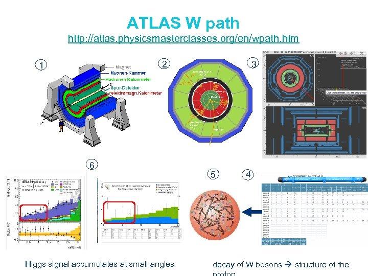 ATLAS W path http: //atlas. physicsmasterclasses. org/en/wpath. htm 2 1 6 Higgs signal accumulates