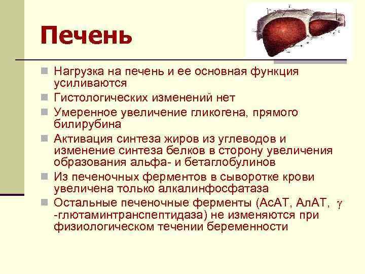 Печень n Нагрузка на печень и ее основная функция n n n усиливаются Гистологических