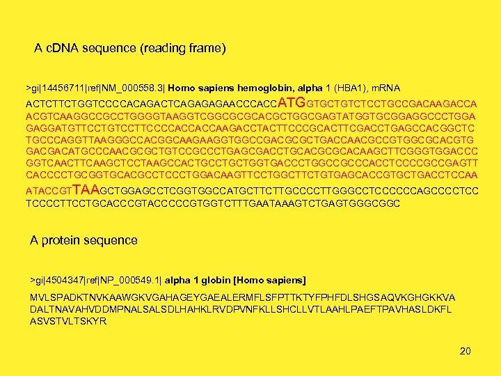 A c. DNA sequence (reading frame) >gi|14456711|ref|NM_000558. 3| Homo sapiens hemoglobin, alpha 1 (HBA