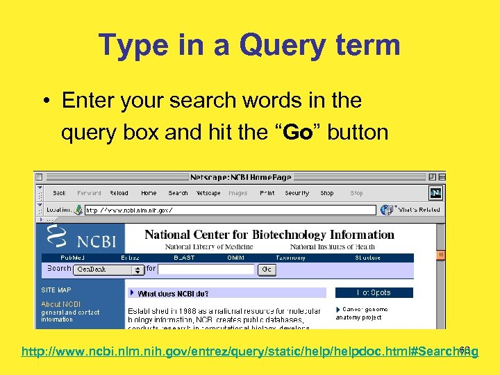 Type in a Query term • Enter your search words in the query box