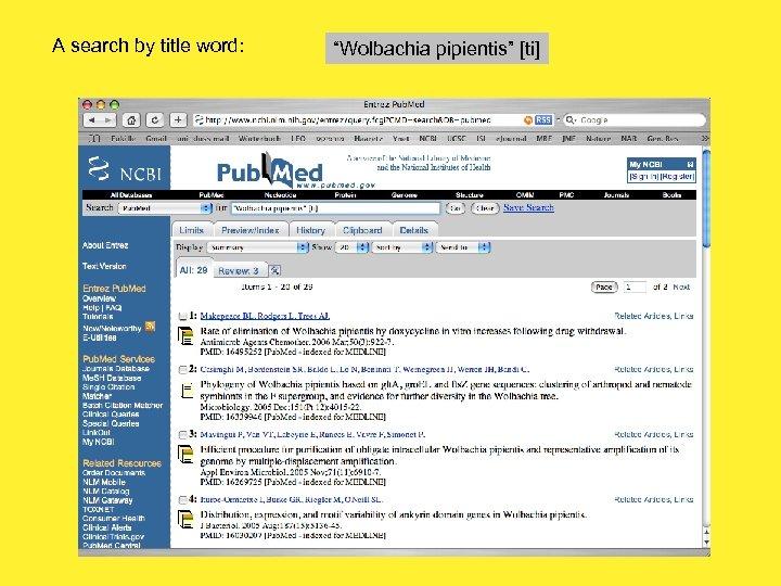 """A search by title word: """"Wolbachia pipientis"""" [ti]"""