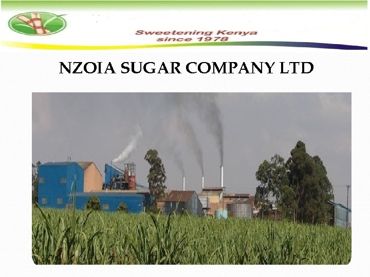 NZOIA SUGAR COMPANY LTD