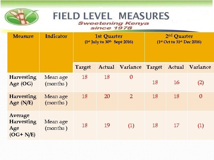 FIELD LEVEL MEASURES Measure Indicator 1 st Quarter 2 nd Quarter (1 st July