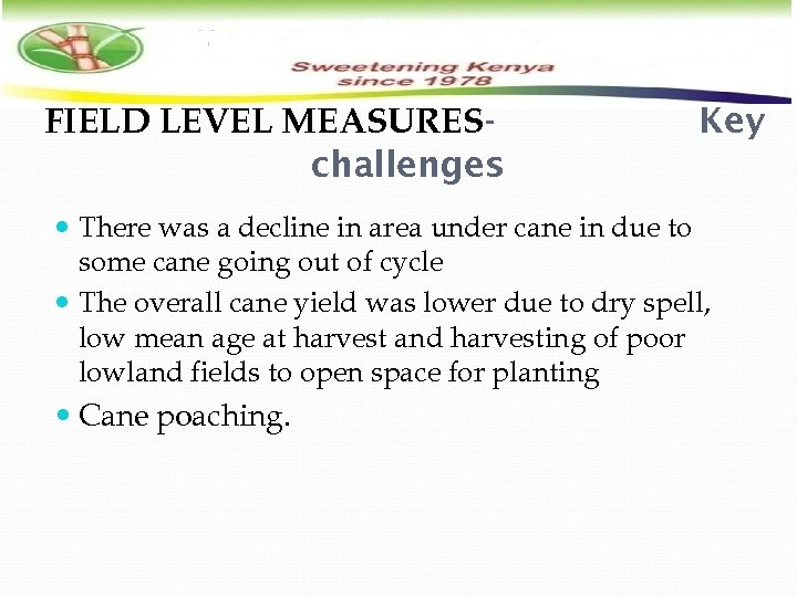 FIELD LEVEL MEASURESchallenges Key There was a decline in area under cane in due