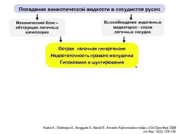 Попадание амниотической жидкости в сосудистое русло Высвобождение эндогенных медиаторов - спазм легочных сосудов Механический