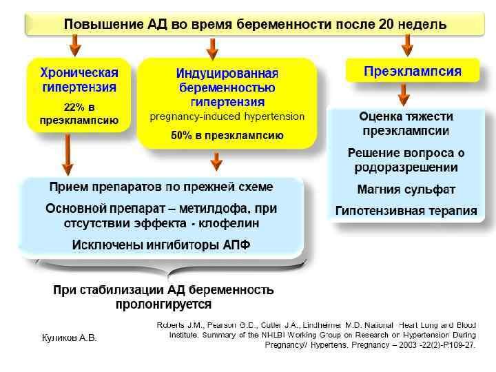 Куликов А. В.