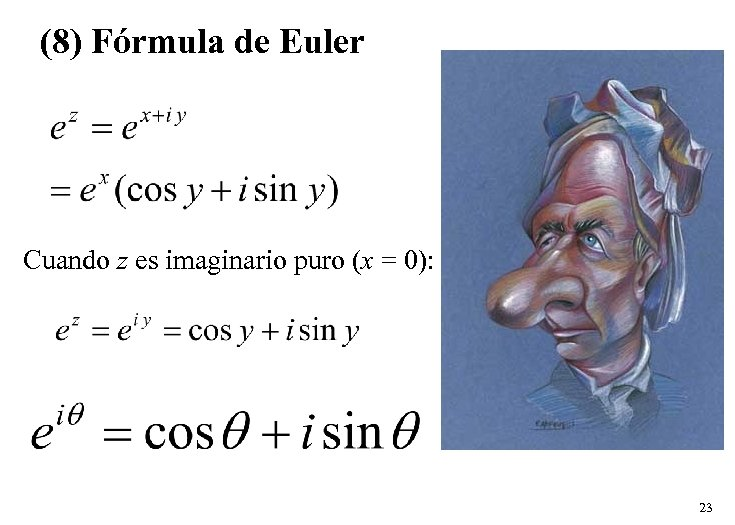 (8) Fórmula de Euler Cuando z es imaginario puro (x = 0): 23