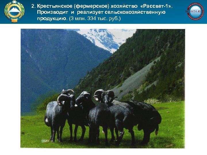 2. Крестьянское (фермерское) хозяйство «Рассвет-1» . Производит и реализует сельскохозяйственную продукцию. (3 млн.