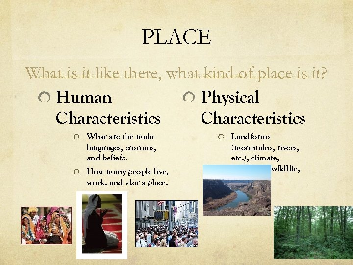 PLACE What is it like there, what kind of place is it? Human Physical