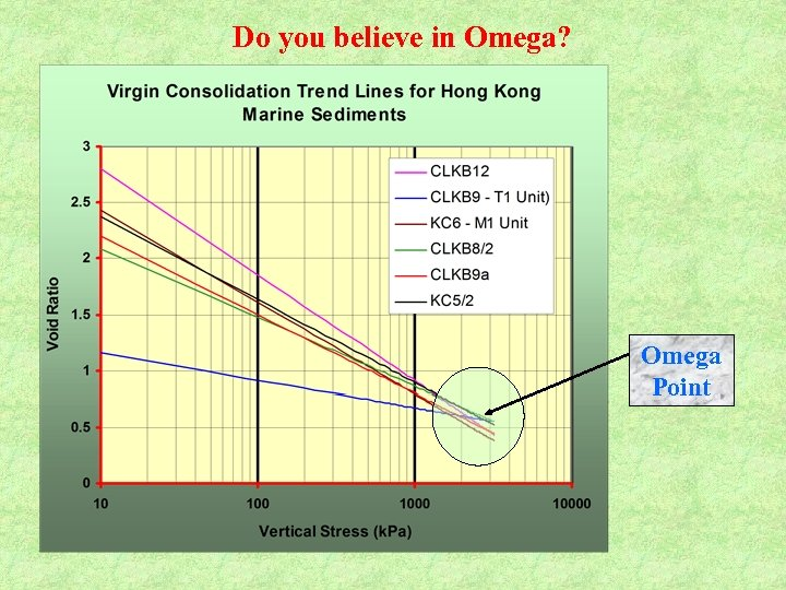 Do you believe in Omega? Omega Point