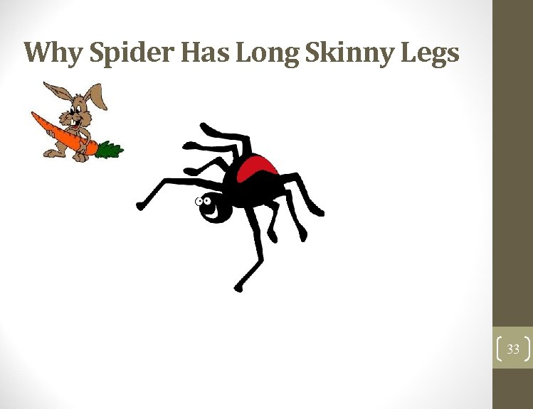 Why Spider Has Long Skinny Legs 33