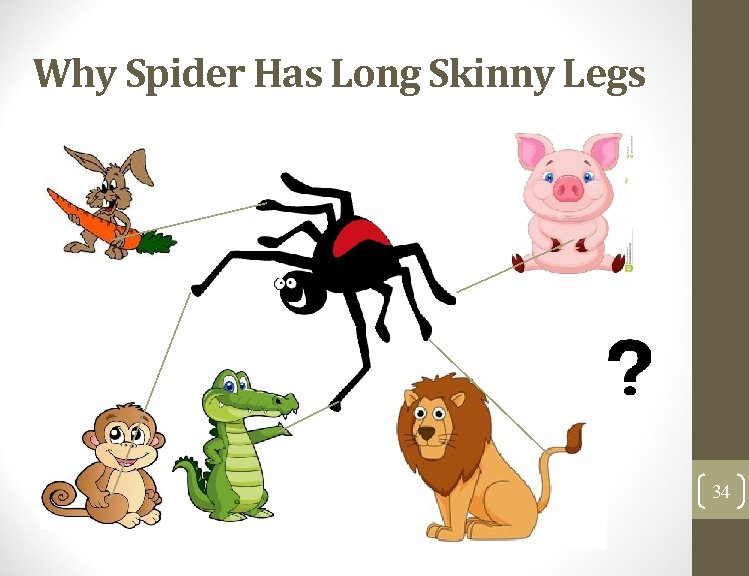 Why Spider Has Long Skinny Legs 34