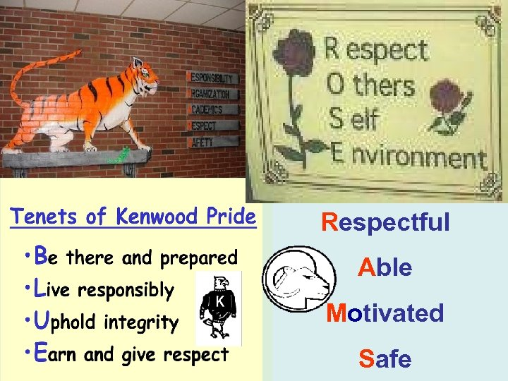 Respectful Able Motivated Safe