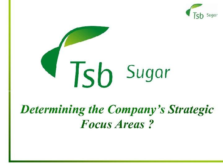 Determining the Company's Strategic Focus Areas ?