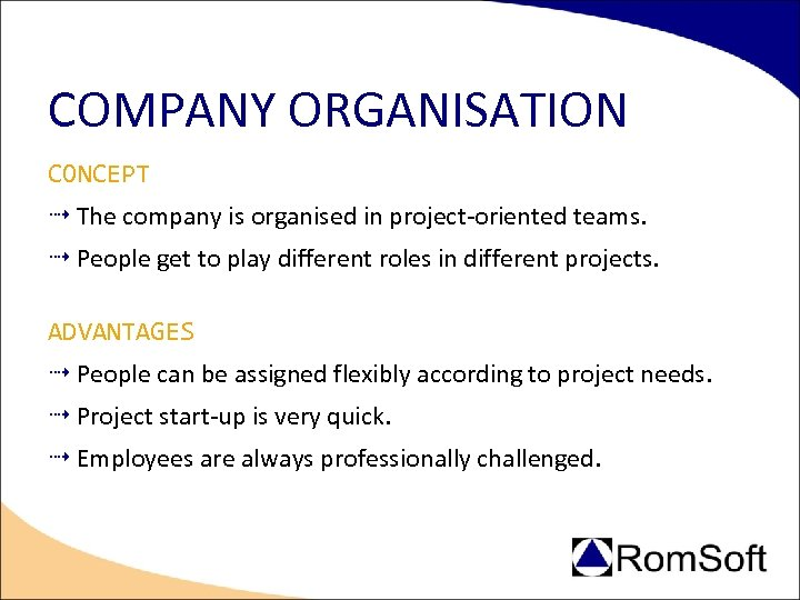 COMPANY ORGANISATION CONCEPT The company is organised in project-oriented teams. People get to play