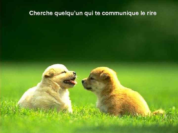 Cherche quelqu'un qui te communique le rire