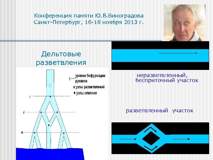Конференция памяти Ю. Б. Виноградова Санкт-Петербург, 16 -18 ноября 2013 г. Дельтовые разветвления неразветвленный,