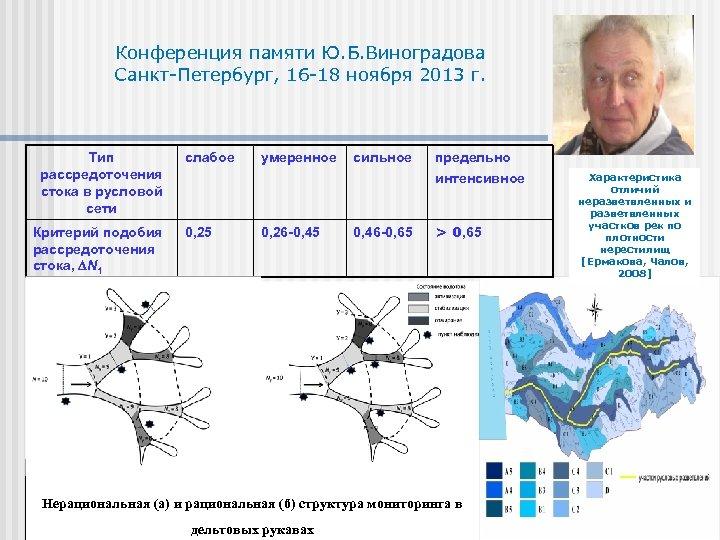 Конференция памяти Ю. Б. Виноградова Санкт-Петербург, 16 -18 ноября 2013 г. Тип рассредоточения стока