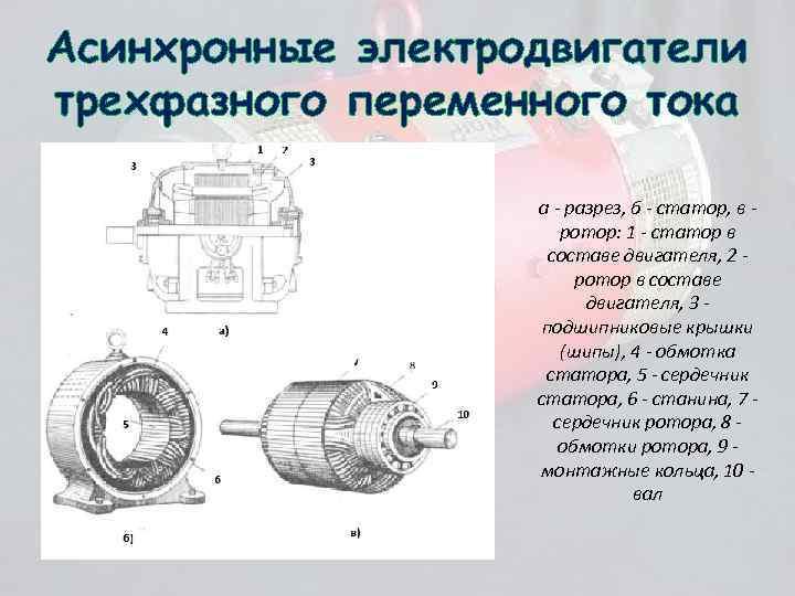 Асинхронные электродвигатели трехфазного переменного тока а - разрез, б - статор, в ротор: 1