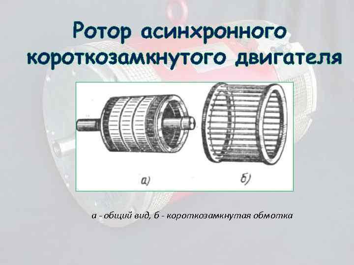 Ротор асинхронного короткозамкнутого двигателя а - общий вид, б - короткозамкнутая обмотка