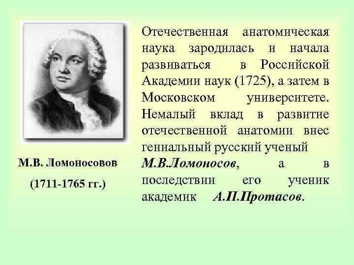 М. В. Ломоносовов (1711 -1765 гг. ) Отечественная анатомическая наука зародилась и начала развиваться