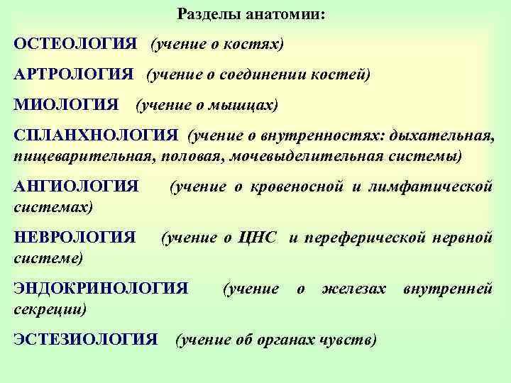 Разделы анатомии: ОСТЕОЛОГИЯ (учение о костях) АРТРОЛОГИЯ (учение о соединении костей) МИОЛОГИЯ (учение о
