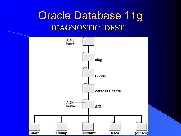 Oracle Database 11 g DIAGNOSTIC_DEST