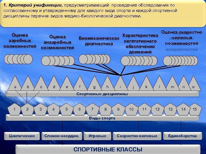 1. Критерий унификации, предусматривающий проведение обследования по согласованному и утвержденному для каждого вида спорта