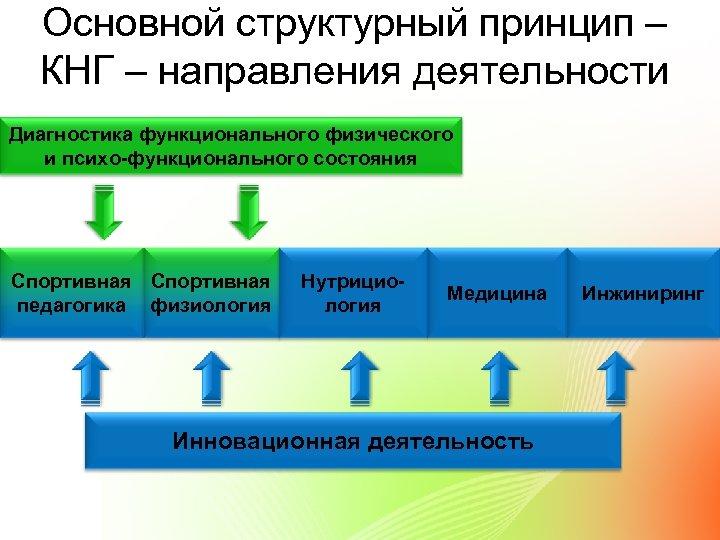 Основной структурный принцип – КНГ – направления деятельности Диагностика функционального физического и психо-функционального состояния
