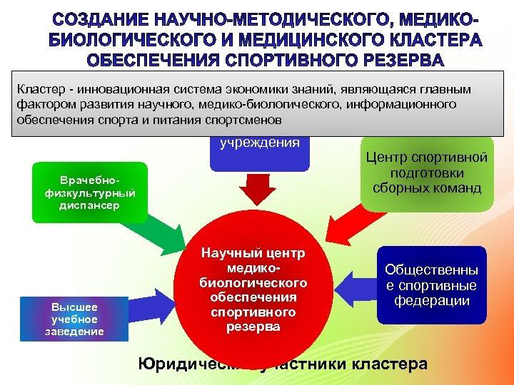 Кластер - инновационная система экономики знаний, являющаяся главным фактором развития научного, медико-биологического, информационного обеспечения