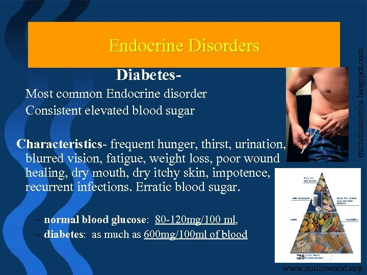 ourlatinamerica. blogspot. com Endocrine Disorders Diabetes. Most common Endocrine disorder Consistent elevated blood sugar