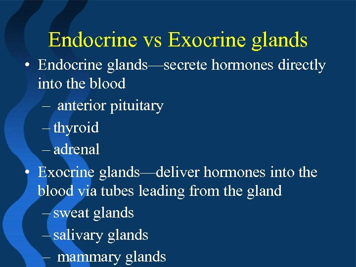 Endocrine vs Exocrine glands • Endocrine glands—secrete hormones directly into the blood – anterior
