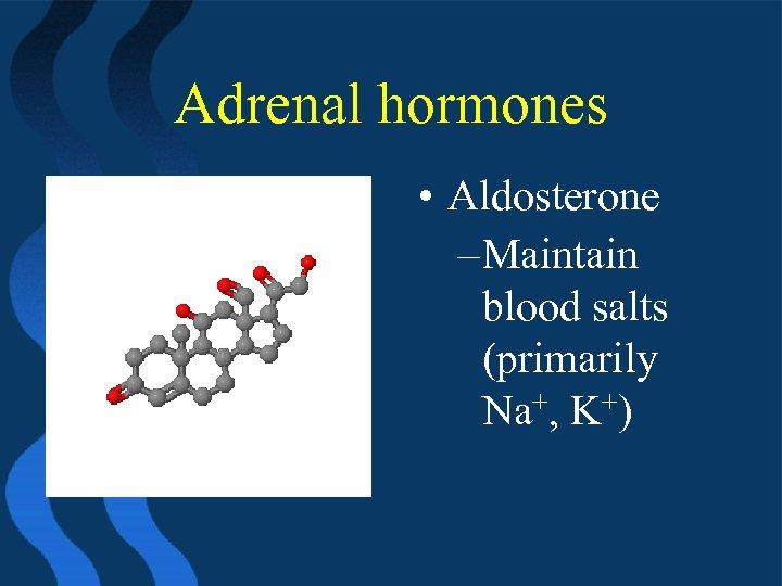 Adrenal hormones • Aldosterone – Maintain blood salts (primarily Na+, K+)