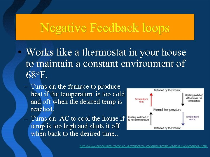 Negative Feedback loops • Works like a thermostat in your house to maintain a